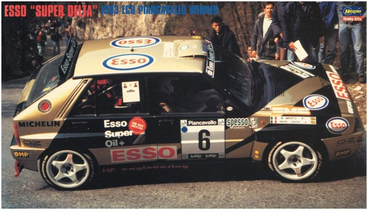 Esso Super Delta 1993 ECR Piancavallo Winner - Click Image to Close
