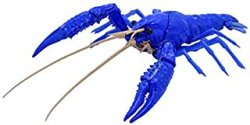 Biology Edition Crayfish (Blue)