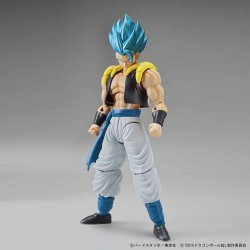 [19th APR 2021] Figure-rise Standard Super Saiyan God Super