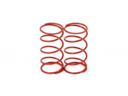 DL293W Front Springs 2pcs