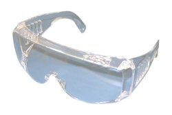 Pro Goggle S Clear (Kids Size)