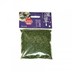 24-416 Japanese Grassland Humid Area Wet Plants 20g