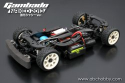 25609 Ganbeido Naked 2013 (Reinforced Chassis